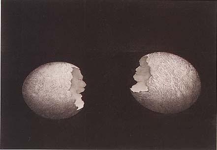 卵型二態Ⅲ 1990年